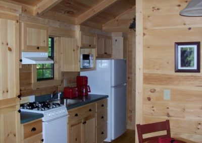 Cabin in the Woods - Kitchen